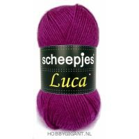 Luca Scheepjes 18