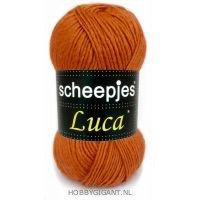 Luca Scheepjes 14