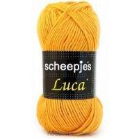 Luca Scheepjes 24